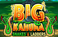 Игровые автоматы Big Kahuna Snakes and Ladders